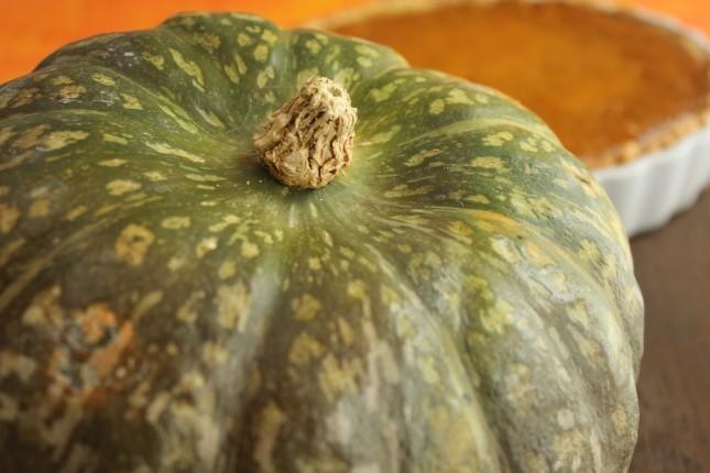 Italian -style pumpkin pie- Pumpkin