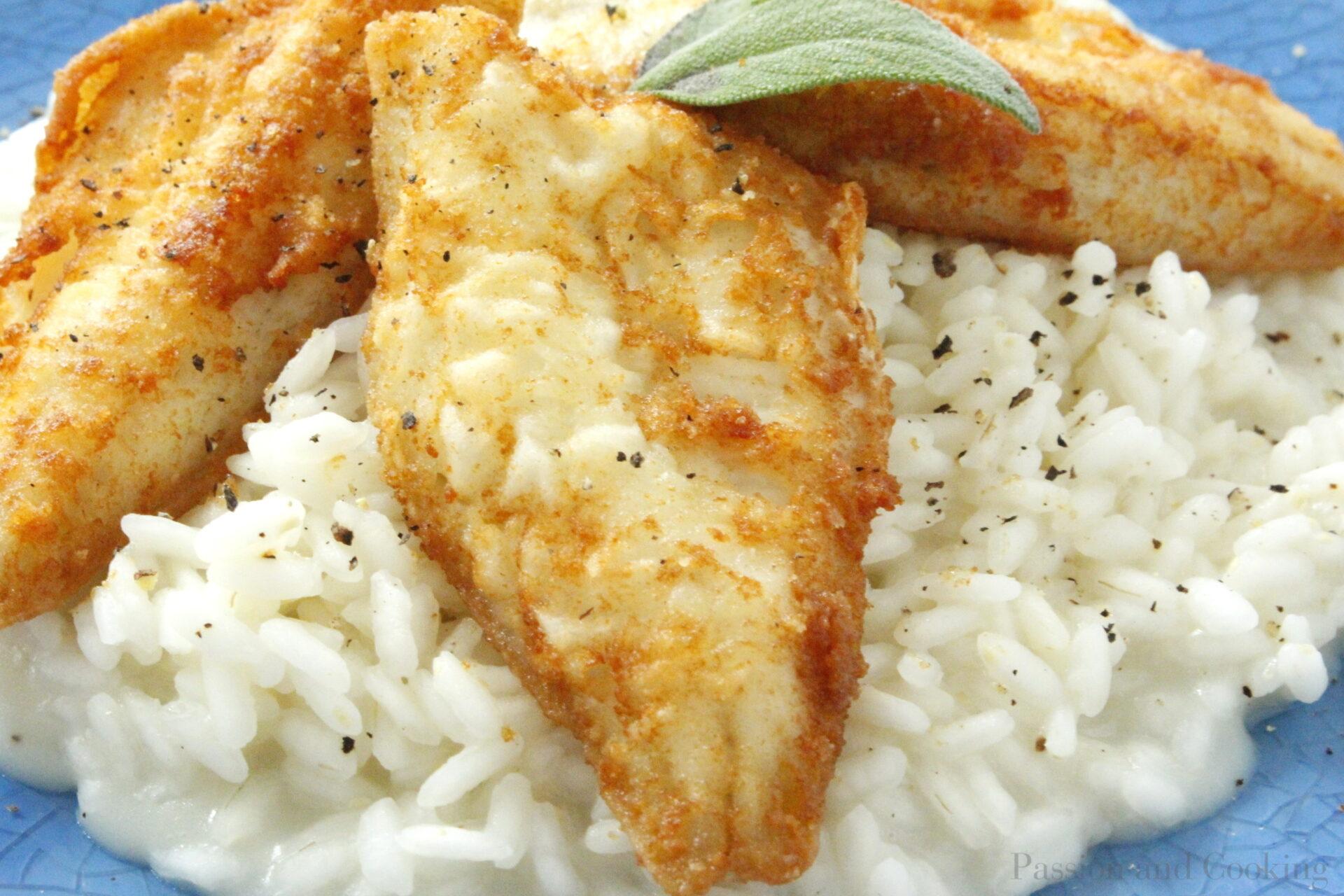 Risotto with Perch Fish